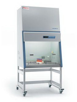 Thermo Fisher Diag Div 1335