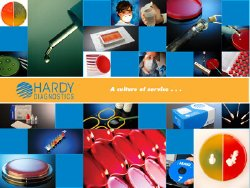 Hardy Diagnostics 231536