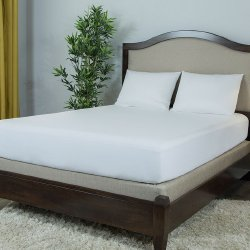 Protect A Bed BAS0135