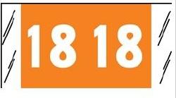 Tabbies 51718