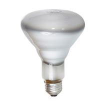 Bulbtronics 0002855