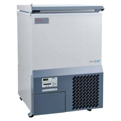 Thermo Fisher/Barnstead ULT390-10-AVC