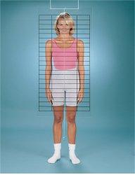 Baseline® Posture Grid