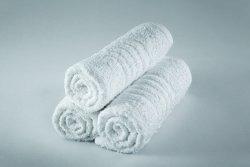 Standard Textile 40526400