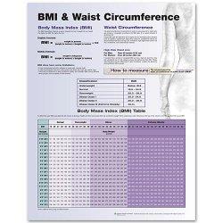 Anatomical Chart Company 9780781772273