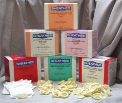 Sheathing Technologies 10021