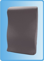 Core Products BAK-453